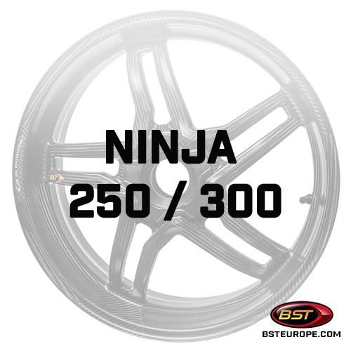 Ninja-250-300.jpg