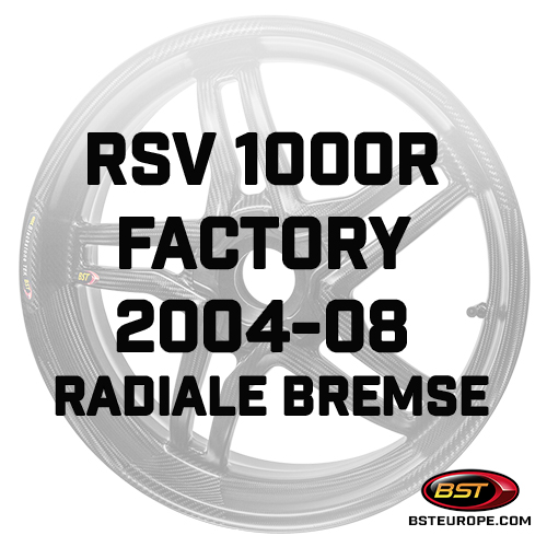 RSV-1000R-Factory-2004-08-Radiale-Bremse.jpg